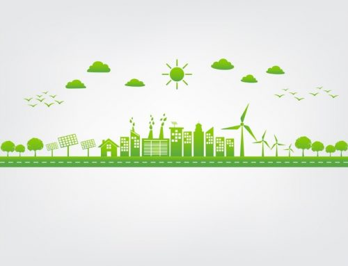 Green Power for Businesses: What Types Are Available to You?