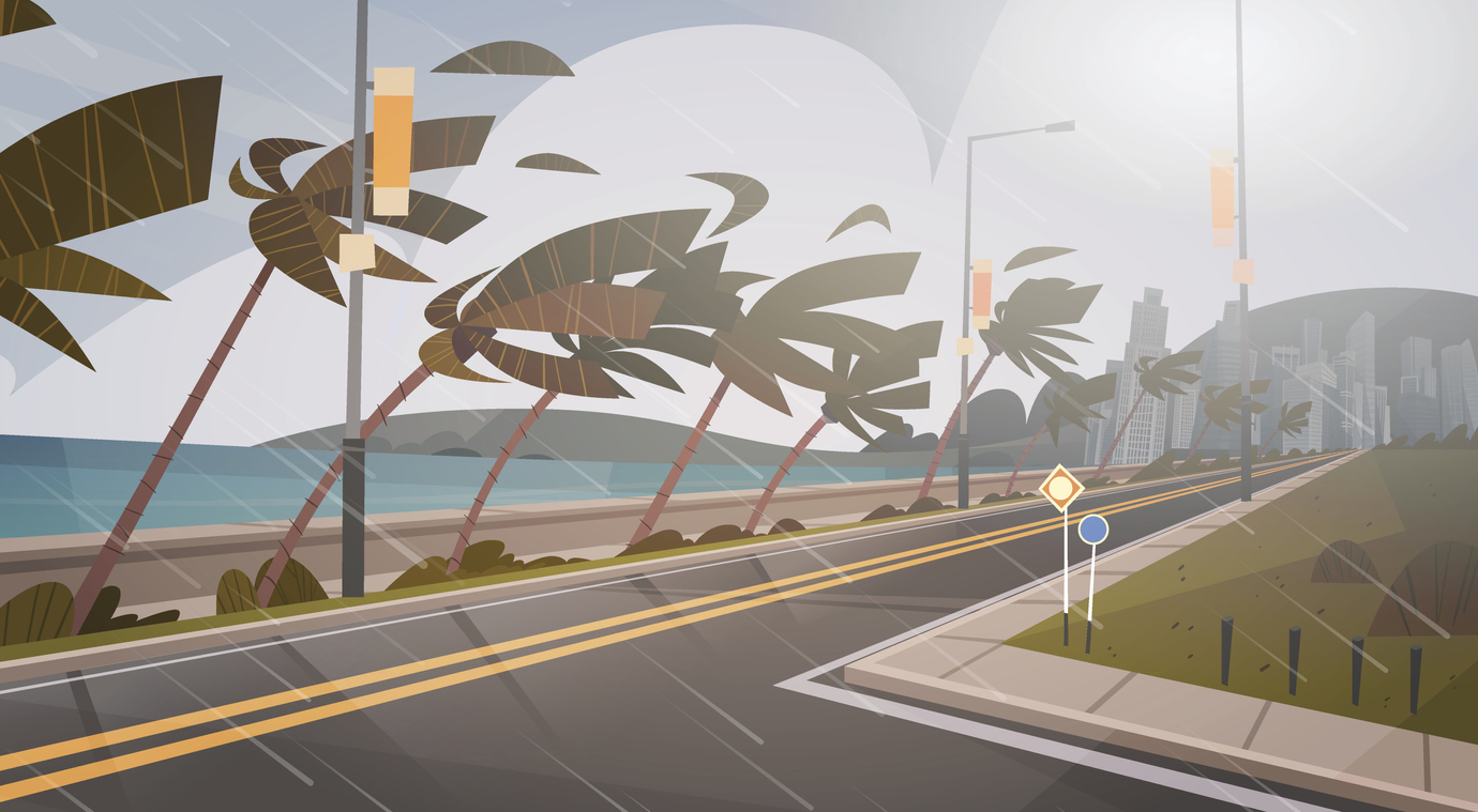 palm trees blowing in a powerful wind beside a street leading to a metropolitan area